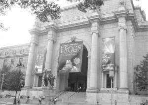 Discover the City The American Museum of Natural History