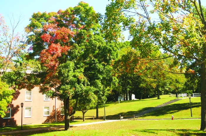 """A shot of """"The Quad,"""" located across from the chapel"""
