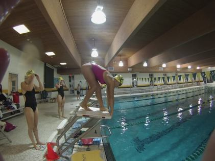 Members of the swim team practice perfecting their dives in the Pratt Natatorium